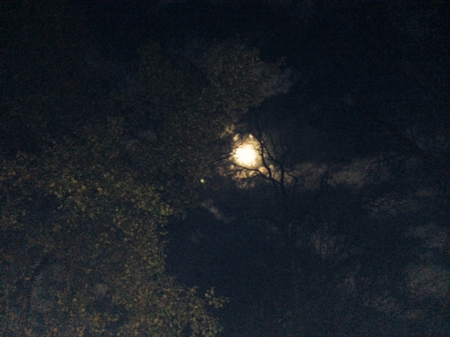 fullmoon wide